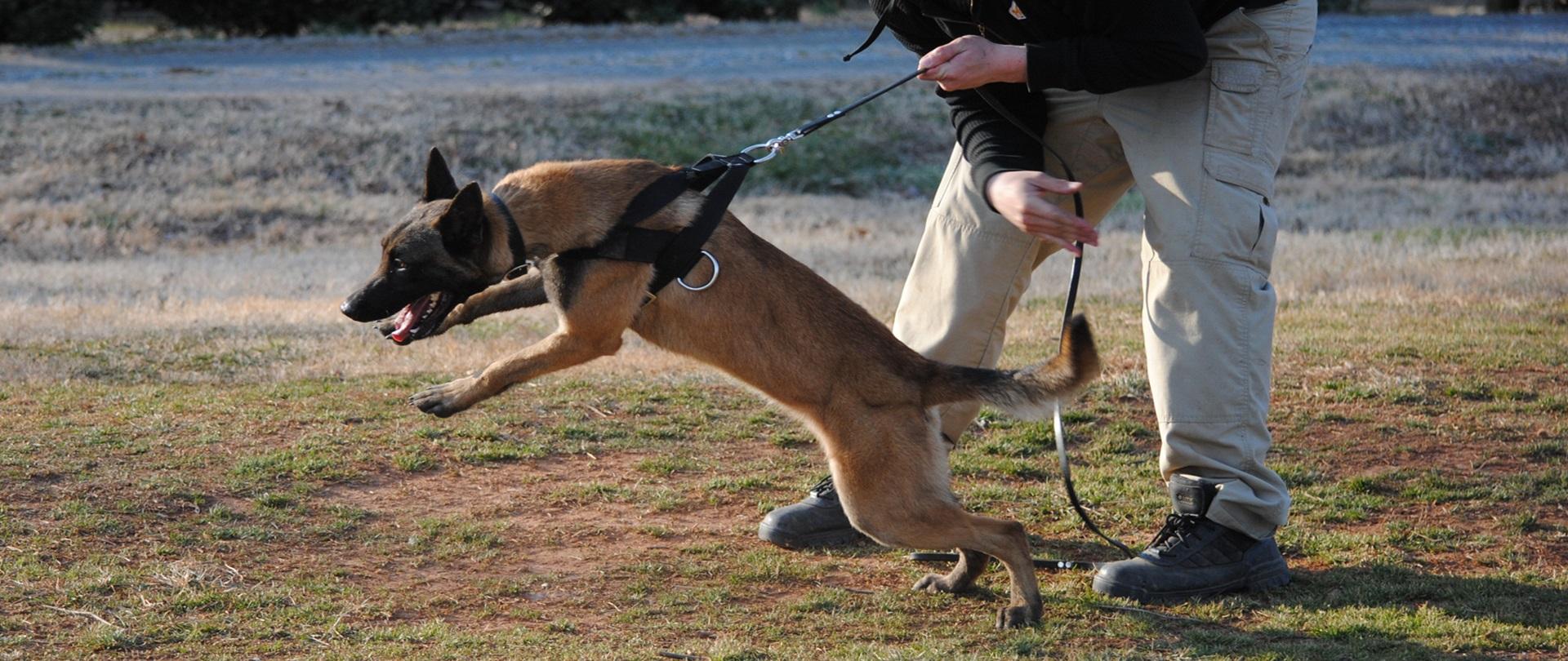 SWISS K-9®<br>Police Training
